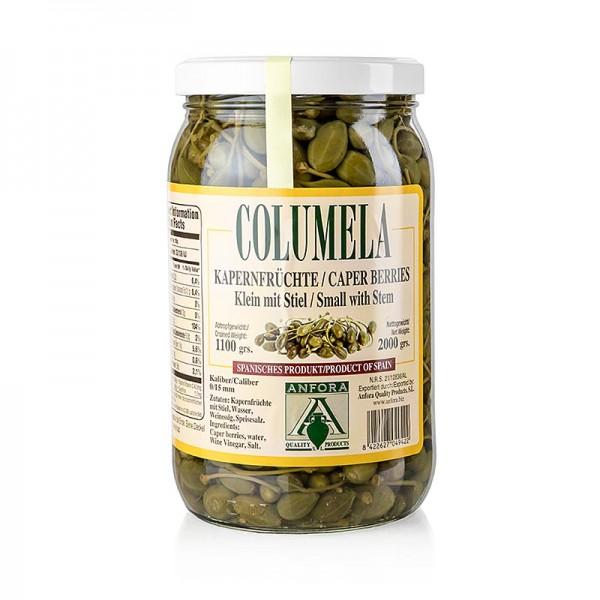 Columela - Kapernfrüchte klein mit Stiel bis 15mm Columela