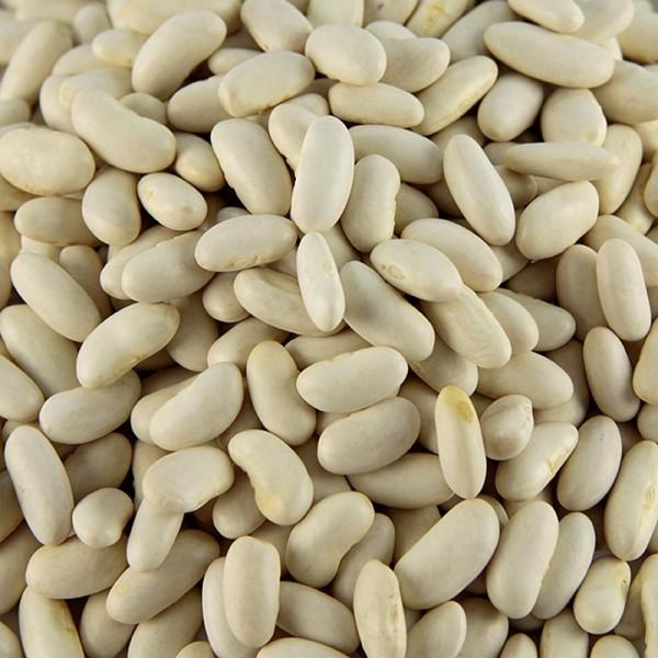 Deli-Vinos Legumes - Bohnen Cannellini weiß und klein getrocknet