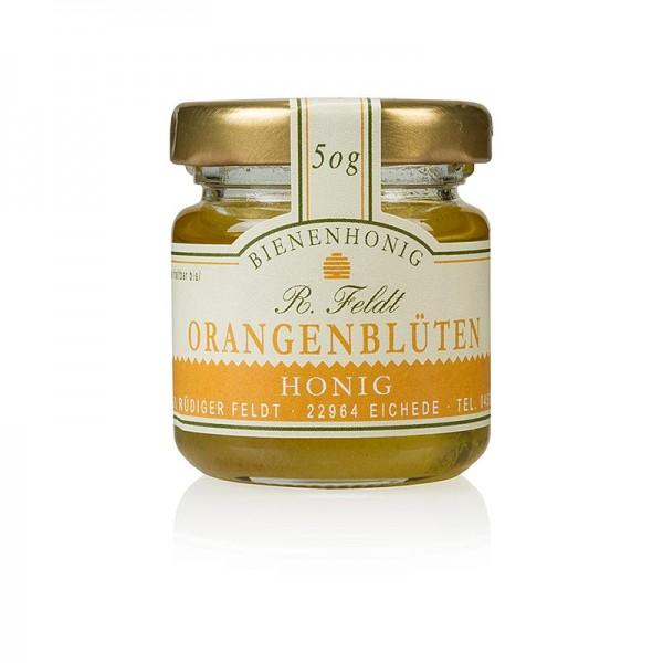 R. Feldt Bienenhonig - Orangenblüten-Honig Spanien goldfarben flüssig lieblich Portionsglas