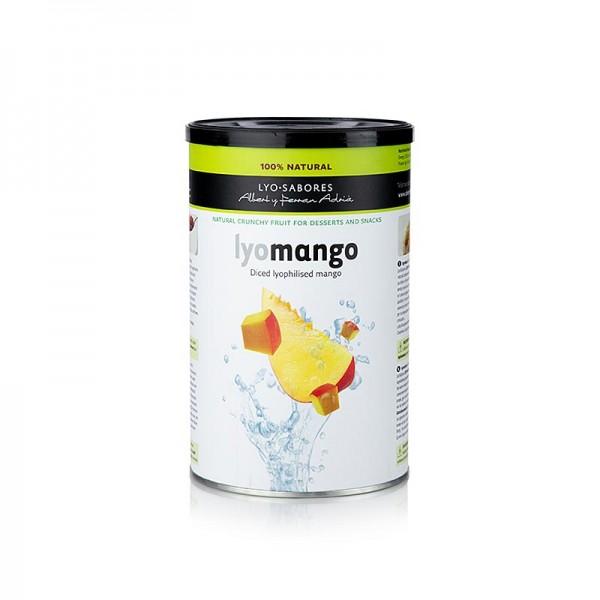 Lyo-Sabores - Lyo-Sabores gefriergetrocknete Mango-Würfel 6-9mm