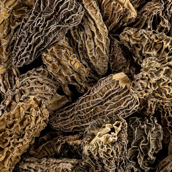 Deli-Vinos Mushrooms - Spitzmorchel-Köpfe Jumbo ab ø 5cm