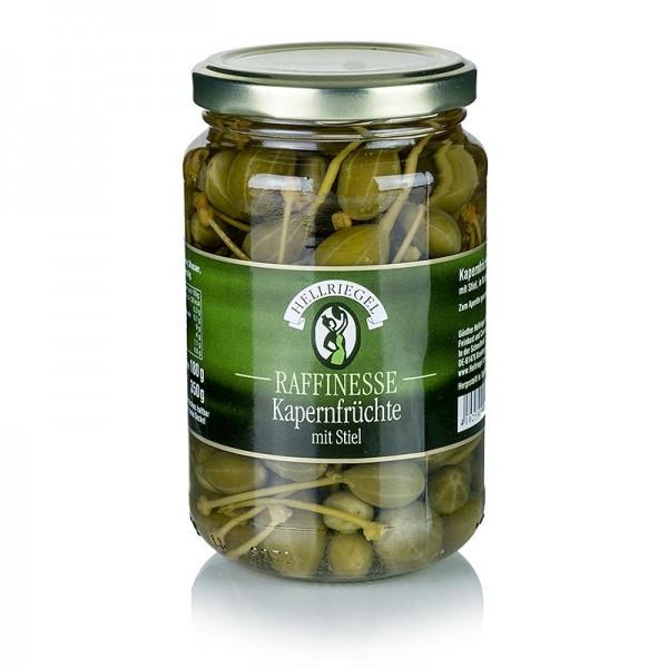 Hellriegel Raffinesse - Kapernfrüchte klein mit Stiel ø bis 15mm Rafinesse