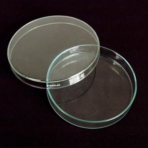 Deli-Vinos Molekular - Petrischalen aus Glas ø 12cm mit Deckel
