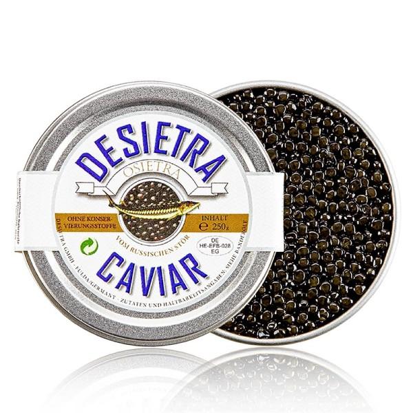 Desietra Osietra - Desietra Osietra Kaviar (gueldenstaedtii) Aquakultur ohne Konservierungsmittel