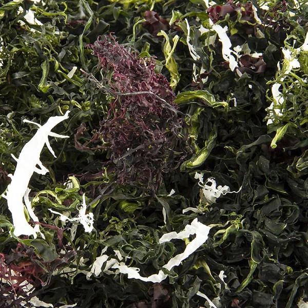 Deli-Vinos Asia - Kaiso Dried Seaweed Mix Seetang getrocknet 6 Algensorten für Kaiso Salat