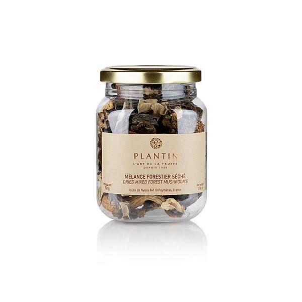 Plantin - Mischpilze - Mélange Forestier Plantin