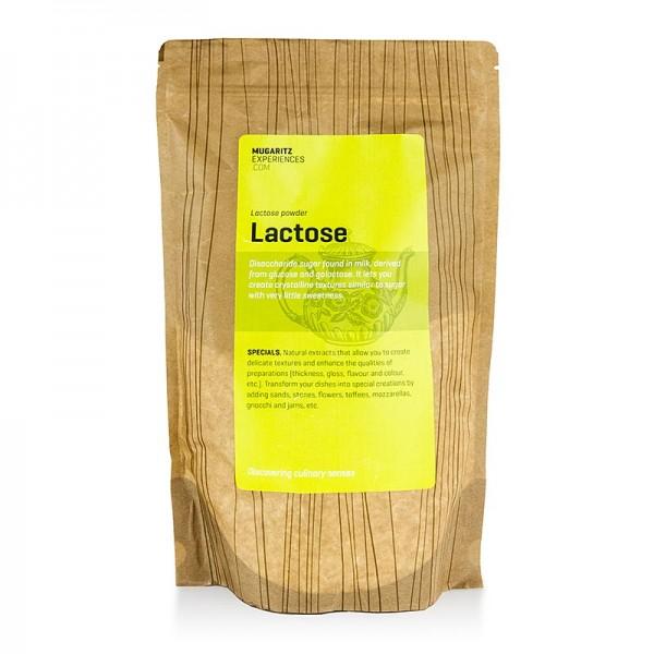 Andoni Luis Aduriz - MUGARITZ Lactose - Milchzucker Andoni Luis Aduriz