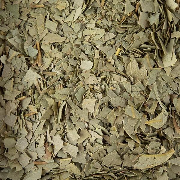 Deli-Vinos Patisserie - Eukalyptusblätter getrocknet