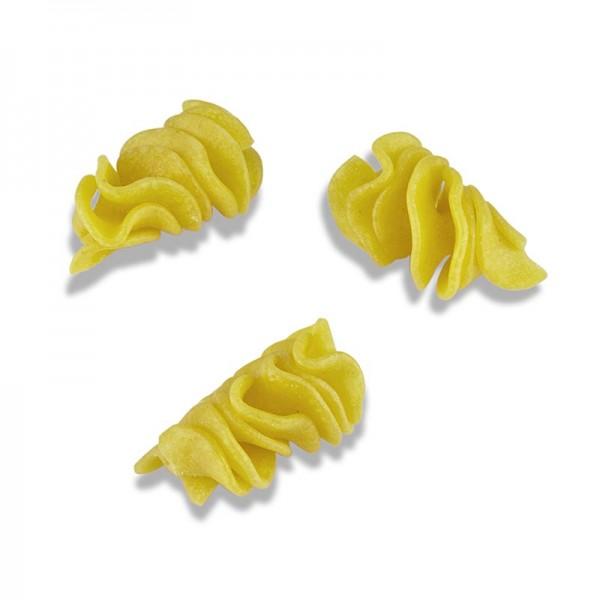 Sassella - Frische Fusilloni Spiralnudeln Sassella