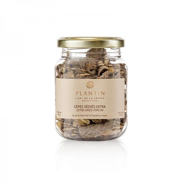 Plantin - Steinpilze - Cèpes Porcini) Plantin