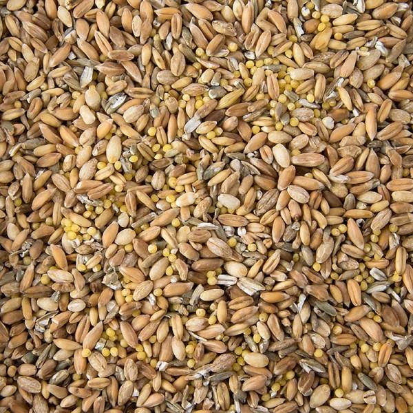 Deli-Vinos Mehl + Getreide - 6 Korn Mischung (Weizen Roggen Dinkel Hafer Hirse Gerste)