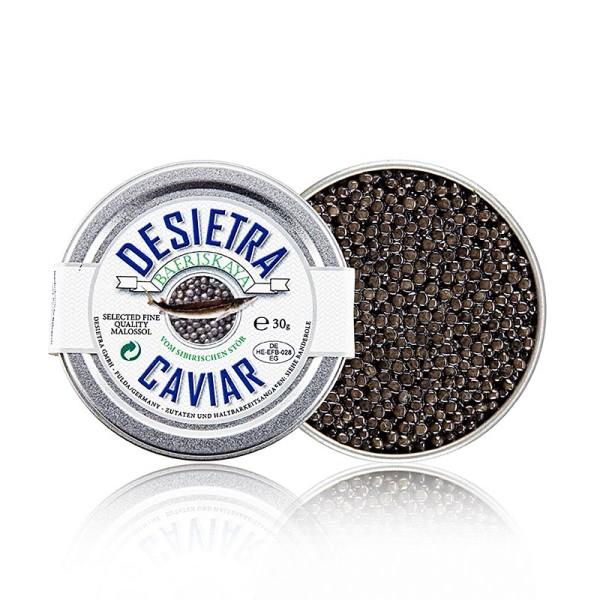 Desietra Baeriskaya - Desietra Baeriskaya Kaviar (Acipenser baerii) Aquakultur Deutschland