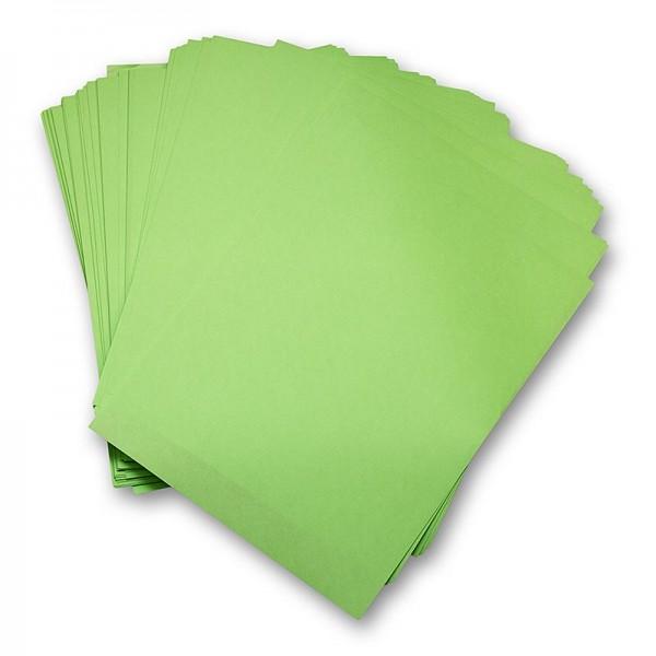 Deli-Vinos Kitchen Accessories - Einschlagpapier fettbeständig Zuschnitte grün 28x38cm