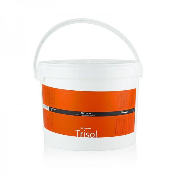 Texturas Albert y Ferran Adria - Trisol lösliche Weizenfaser Texturas Surprises Ferran Adrià