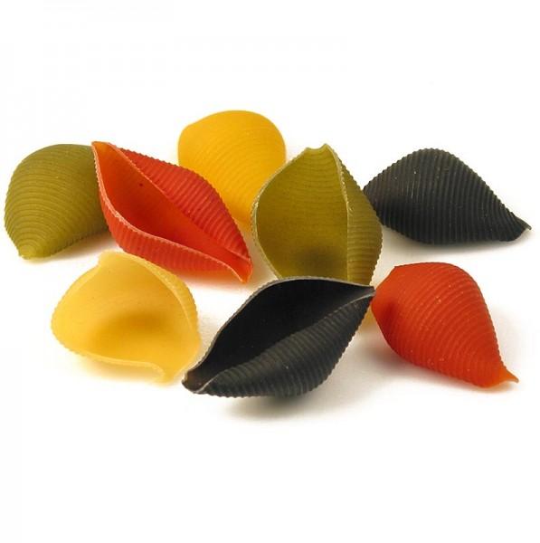 Deli-Vinos Riso & Pasta - Große Muschelnudeln zum Füllen Conchiglioni Arleccino 4-farbig