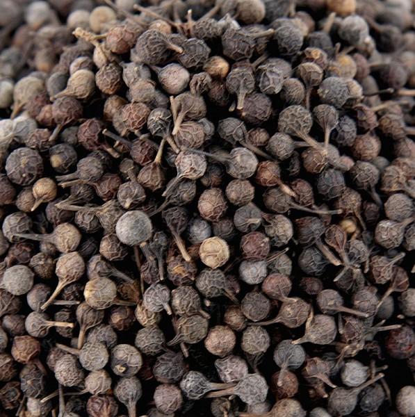 Gewürzgarten Selection - Kubebenpfeffer - Javanischer Pfeffer auch Schwanzpfeffer/Stielpfeffer genannt