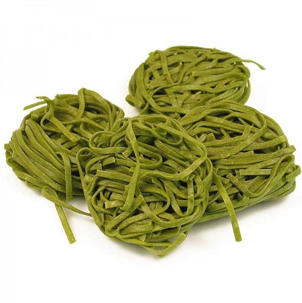 Sassella - Frische Tagliarini mit Spinat grün Bandnudel 3mm Sassella