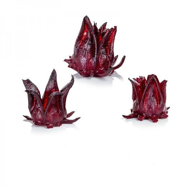 Wild Rosella - Wild Rosella Blütenkelche vom wilden Hibiskus TK