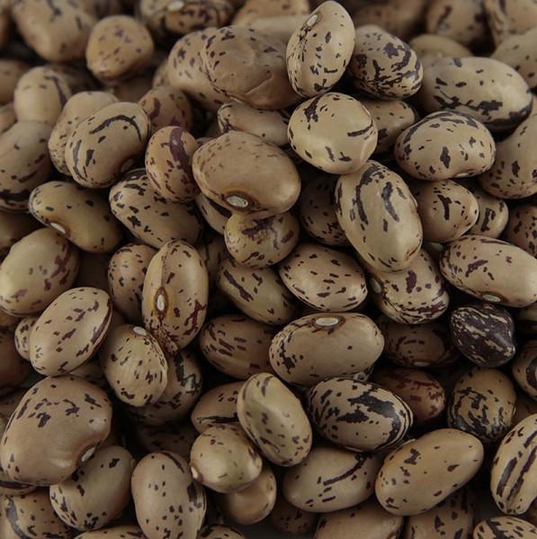 Deli-Vinos Legumes - Bohnen Borlotti - Wachtelbohnen klein getrocknet