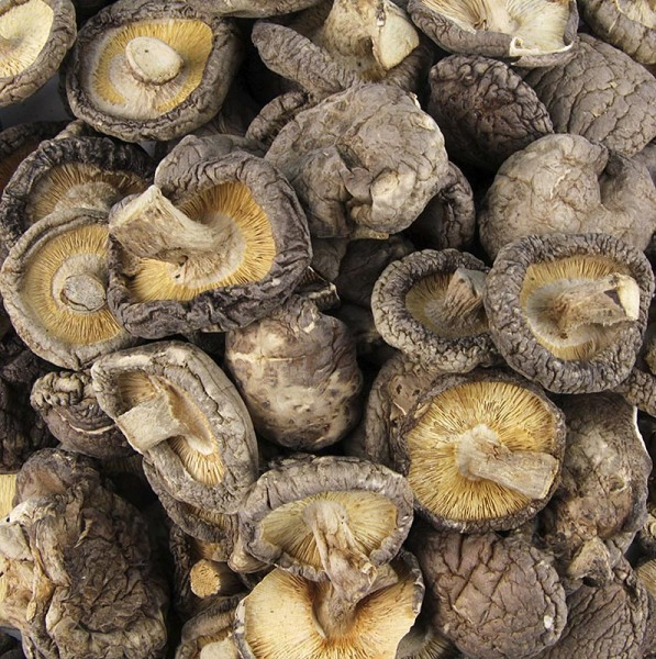 Deli-Vinos Mushrooms - Shiitake Pilze Tongu kleine Kalibrierung ø 3cm Zhong-Hon-Gu