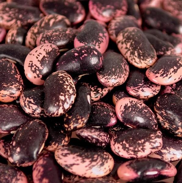 Deli-Vinos Legumes - Bohnen Käferbohnen groß rot-schwarz-violett getrocknet Österreich