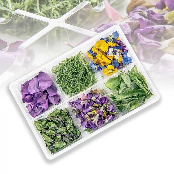 Keltenhof - Herb Spirit Box - 6 gefriergetrocknete Kräuter & Blüten Keltenhof